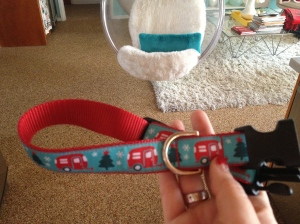 Airstream dog collar