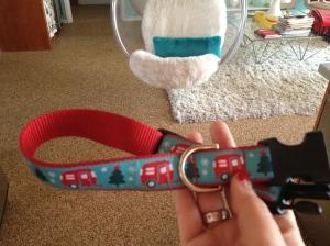 Airstream dog collar