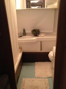 Airstreamy bathroom